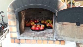 Pizzaofen / Holzbackofen / Brotbackofen Forno de Pedra 100x100cm Bild 2